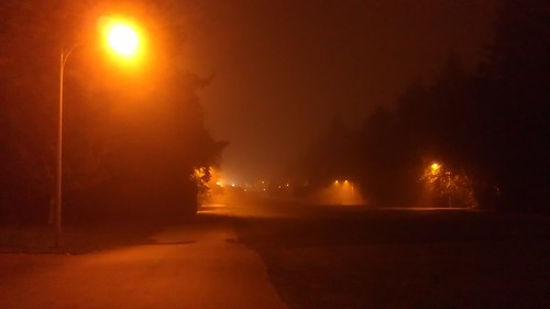 Fog! by christopher575