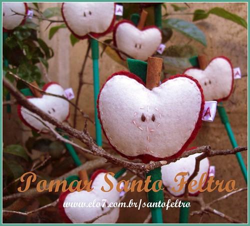 Pomar Santo Feltro by edilmarasantiago