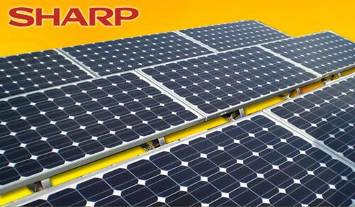 Sharp Solar - крупнейший производитель солнечных батарей Японии