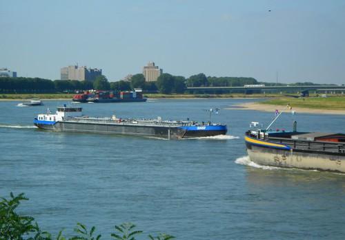 Busy Rhine