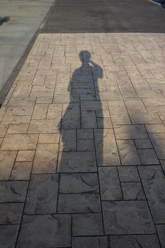 影がながーくなりましたな