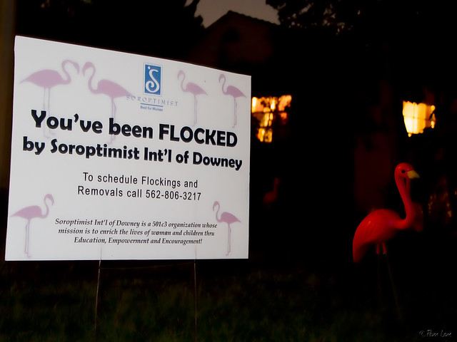 Flamingos Soroptimist sign
