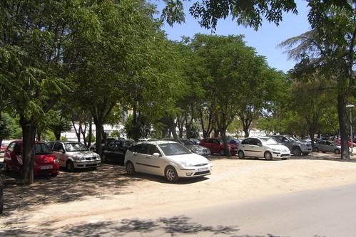 Zona verde, utilizada como aparcadero en el lado Sur del Campus de Rabanales.