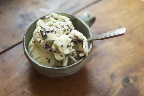 mint chocolate chunk ice cream