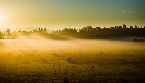 mist field fog arlington sunrise washington state farm sony farmland wa hay fullframe alpha sunrays za 850 carlzeiss arlingtonwa a sal2470z variosonnar247028za sonycz2470mmf28 2470mmf28carlzeissvariosonnart