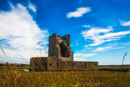 ireland kerry countykerry towerhouse rivershannon geraldfitzgerald 1490s carrigafoylecastle 15thearlofdesmond conorliathoconnorkerry irishfortress rockofthehole