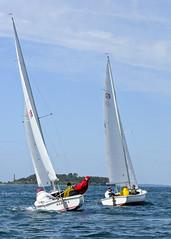 yacht racing, sail, sailboat, sailing, sailboat racing, dinghy, keelboat, vehicle, sailing, sports, sea, skiff, windsports, mast, watercraft, scow, dinghy sailing, boat,