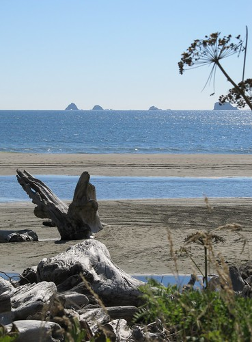 Cape blanco state park reviews tips activities park for Blanco state park fishing