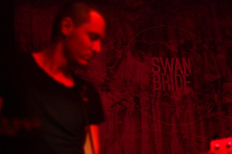 The Swan Bride