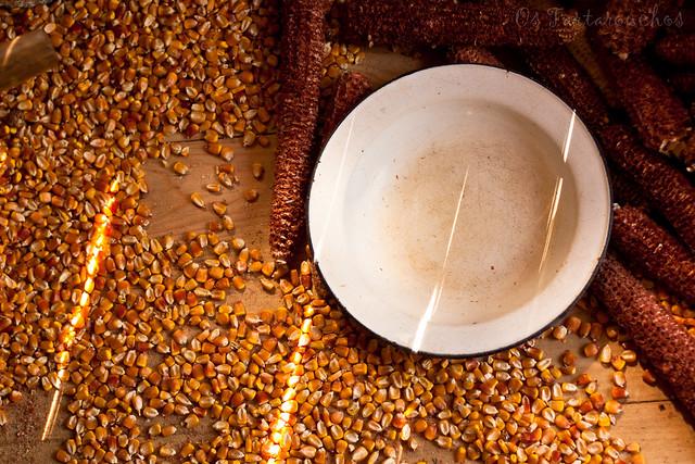 Outono no millo I
