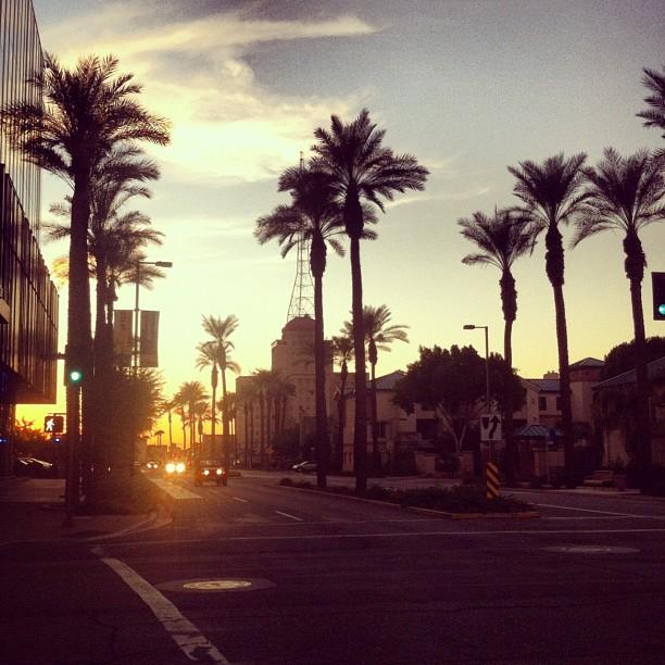 Phoenix at evening