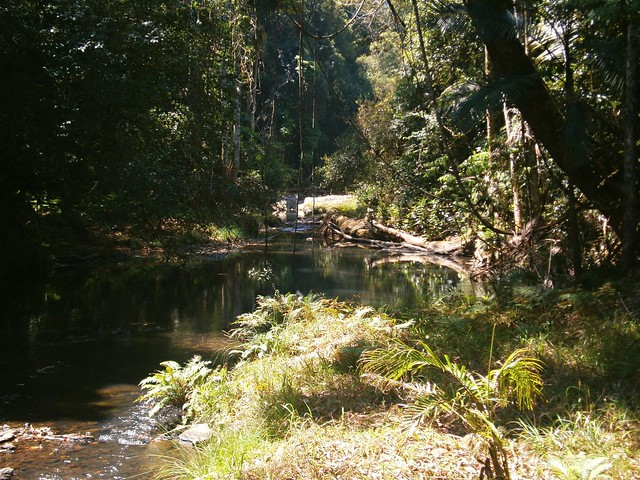 Booloumba Creek
