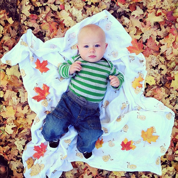Changing leaves, changing boy. He's growing up too fast! #dailyjohn