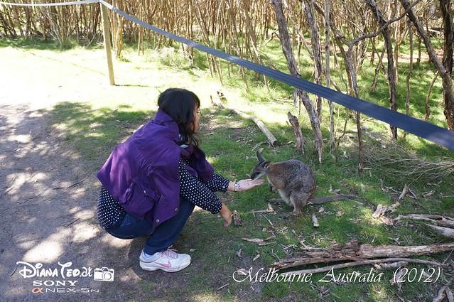 Melbourne, Australia 11