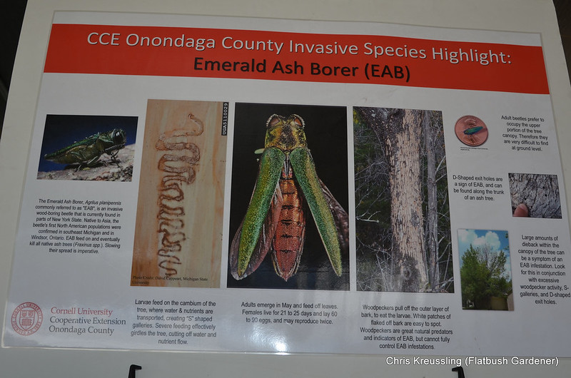 EAB Exhibits