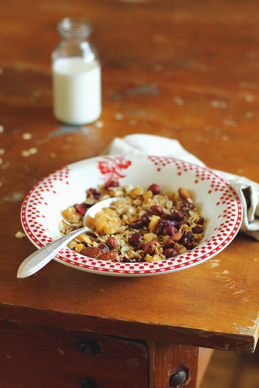 Homemade Granola with Dried Cranberry and Nut Mix