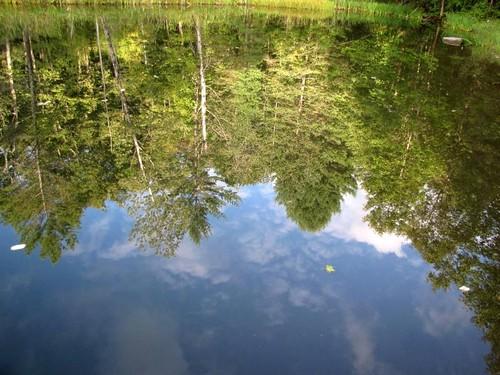 Reflections-3 Original