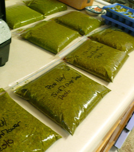 22 batches of pesto (!!)