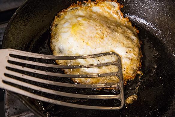 Backbone egg