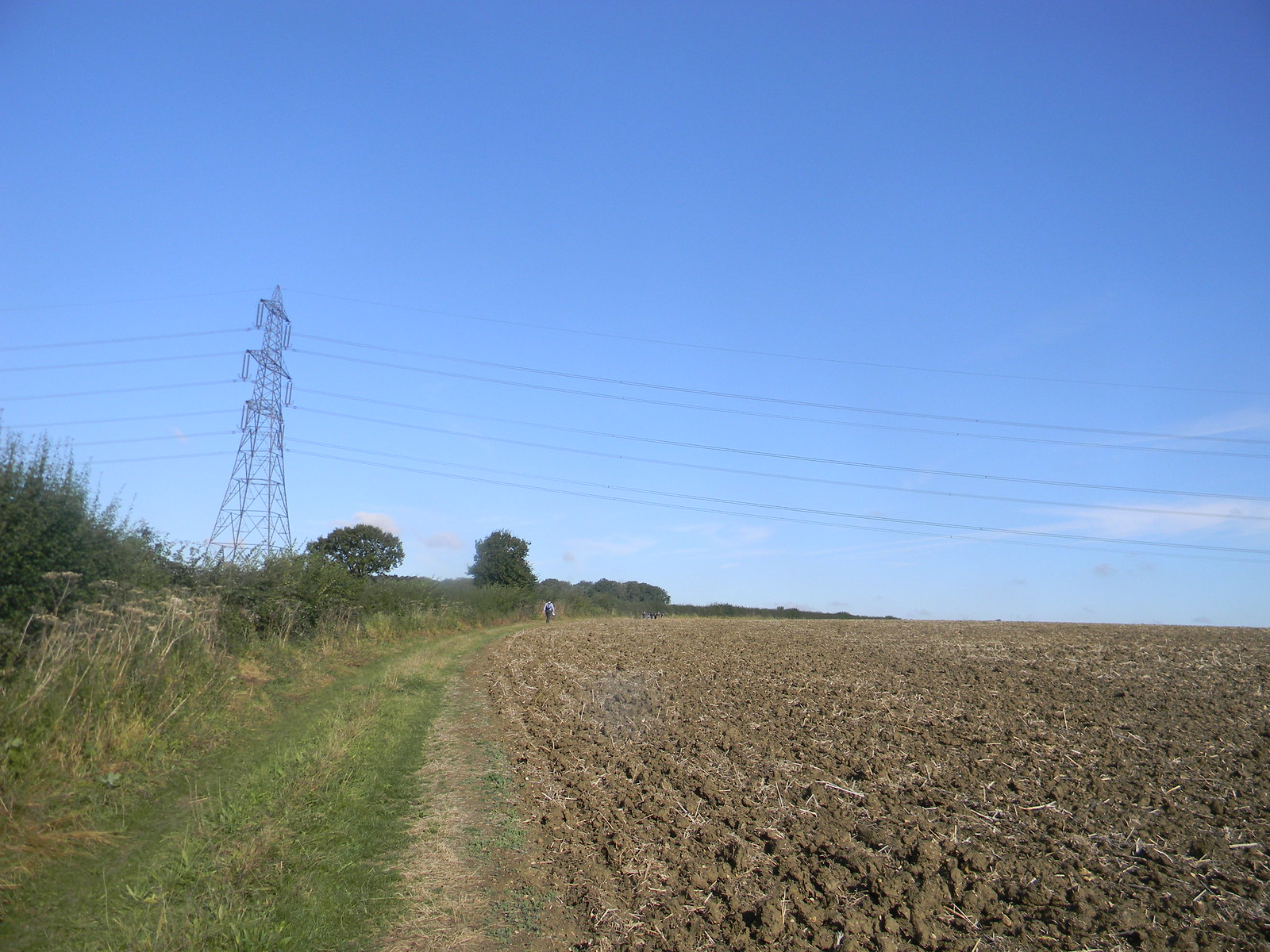 Pylon Roydon to Sawbridgeworth