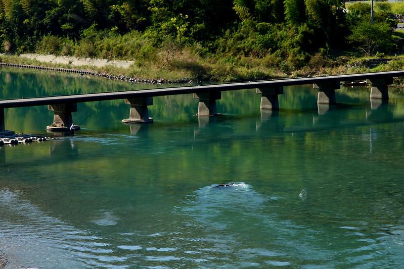 IMG_3154_9-26 Niyodogawa River
