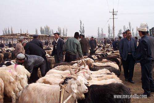 Cabras en el mercado
