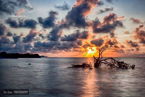 ocean longexposure tree beach water clouds sunrise landscape sand florida cloudy islamorada hdr floridakeys 1exposure annesbeach lowermatecumbekey nikdfine timazar hdrefexpro2 anneeaton