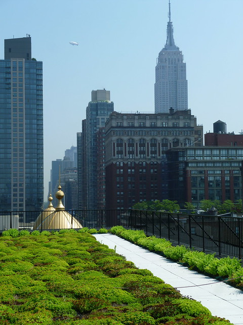 The view from the Manhattan architecture firm's headquarters proves that office space need not be disconnected from nature. Photo by Elizabeth Peters.