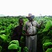 Farmer Paradza and employee / Credit: Stanley Kwenda/IPS