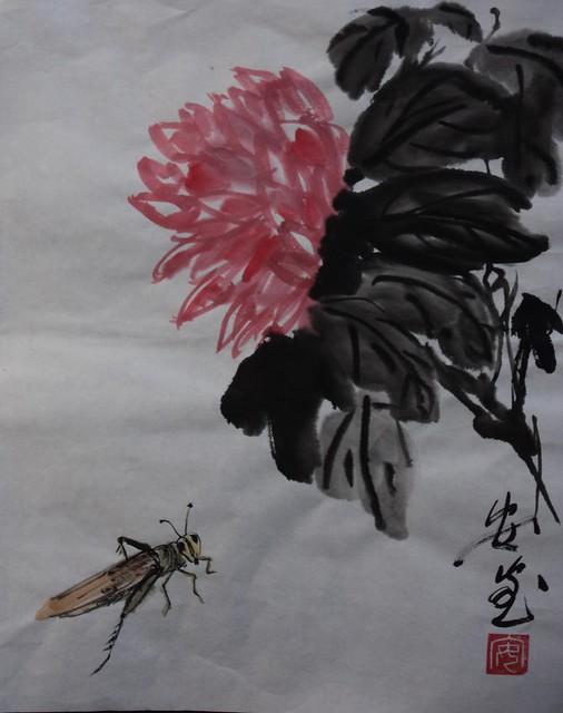 Annies, Chrysanthemum
