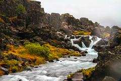 Downstream. Öxarárfoss, þingvellir, Iceland.