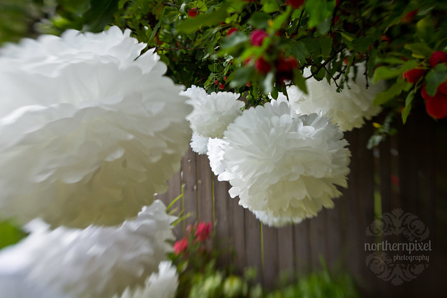 DIY Wedding - Tissue Paper Puffballs
