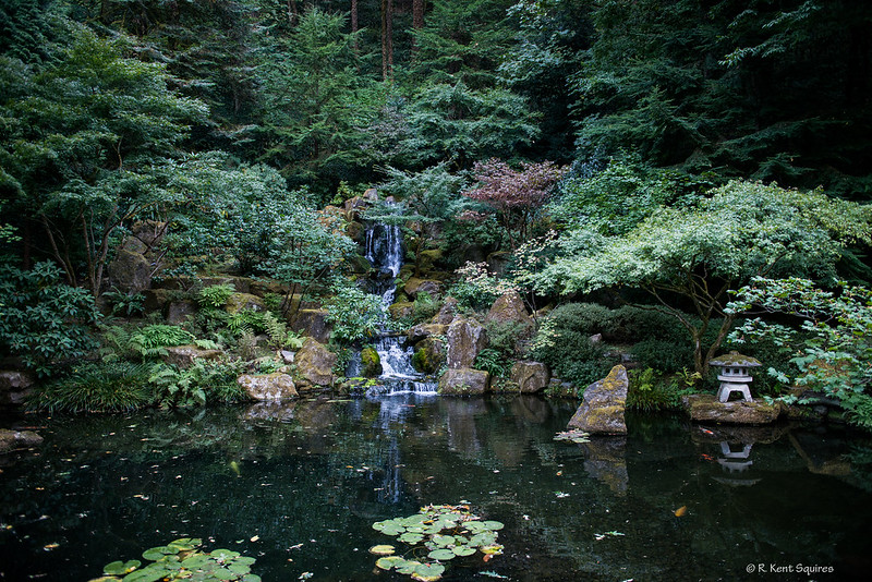 Japanese Garden-4690