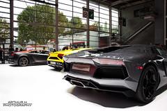 Lamborghini Aventador, Gallardo, Superleggera