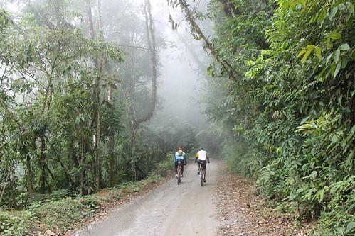 Mountain Bike - Ilhabela - Castelhanos - Por Pedro Barreto-5