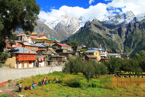 Kalpa - our favourite village in Himachal