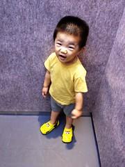 エレベーターとらちゃん (2012/8/27)