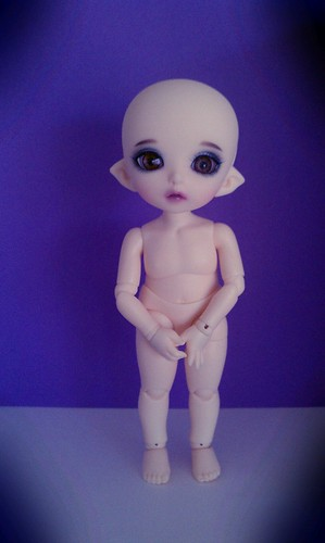 Meet Noelle - PKF Luna