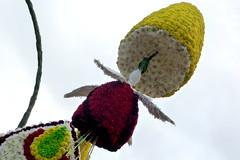 Laredo 2012, Batalla de Flores, 31 de agosto,