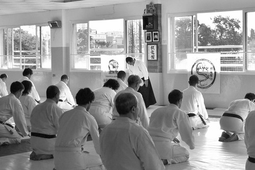 Instituto Nintai  - Aikido Yoshinkan
