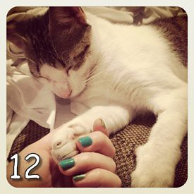 Instagram (12)