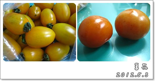 120503-蕃茄