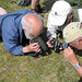 Looking for Dwarf Pansies on Bryher Island (Clive Manvell)