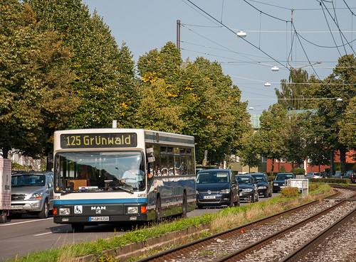 4858 zwischen Theodolindenplatz und Authariplatz