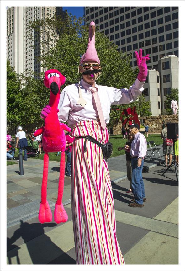 Flamingo Party At Citygarden 1