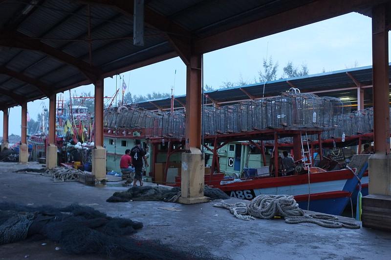 Fish Market  6.