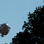 The Hood Blimp