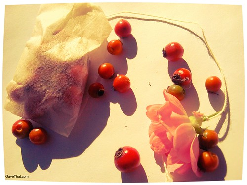 Rose Hip Tea Bags
