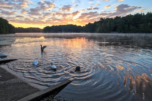 park lake clouds sunrise georgia outdoors colorful ducks boatramp ozora tribblemillpark tribblemill