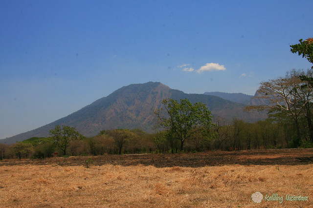 8029515672 2c0cbc7a66 z Baluran National Park   Explore Natural Wild life of Indonesia